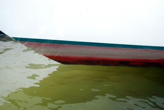 New Waterline